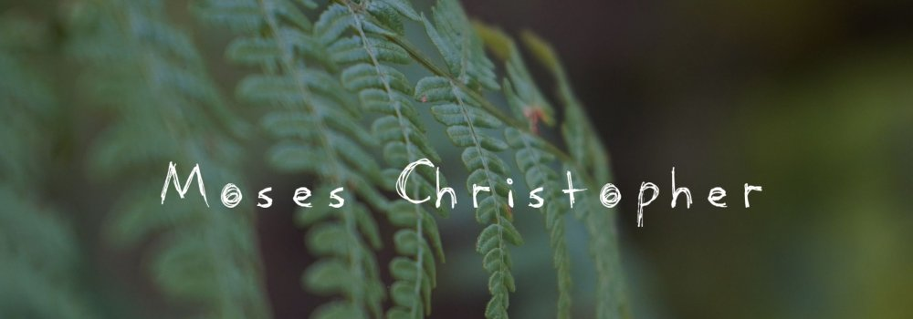 Moses Christopher